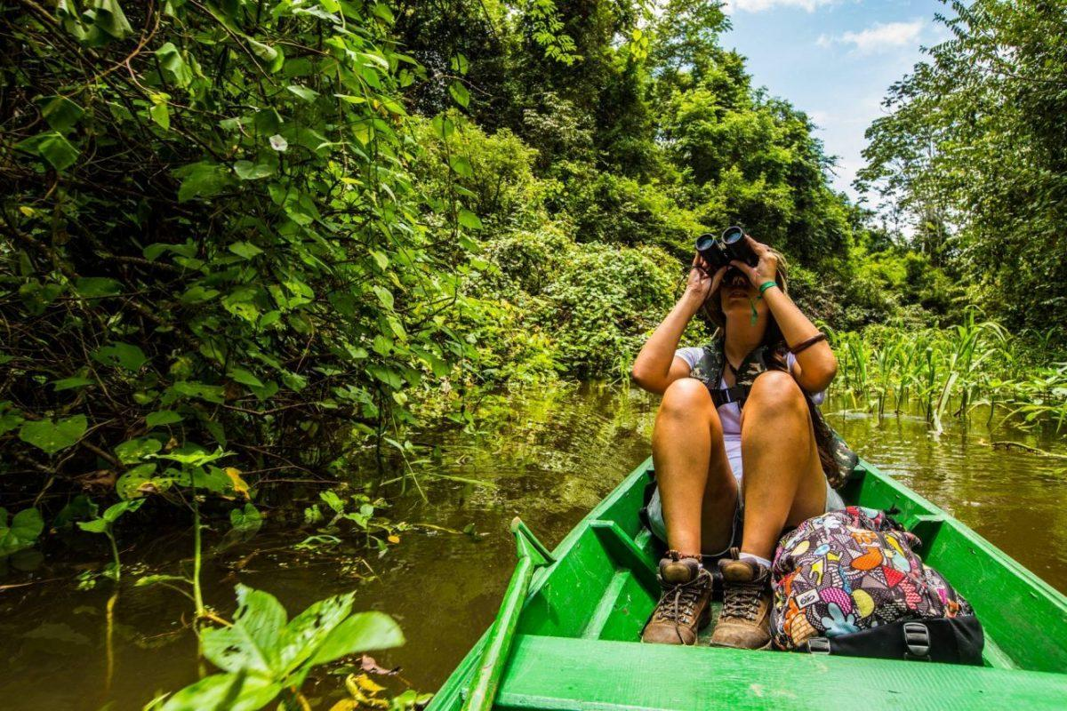 Experience Brazil's wild side - Amazon rainforest