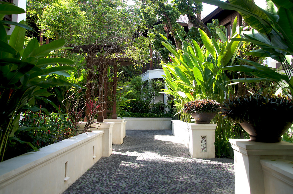 gravel planted path at 137 pillars house in chiang mai thailand