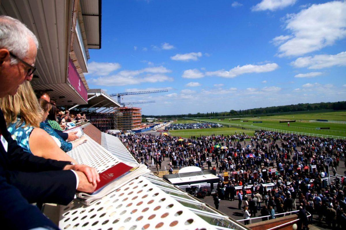 terrace of the Fred Winter Suite of the Newbury Racecourse main field on al shaquab lockinge day